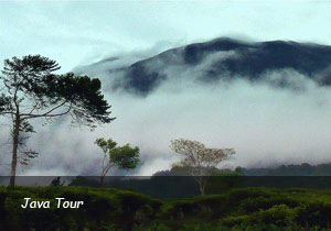 Land-Tour-2-Java-Tour