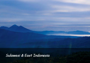 East-Indonesia