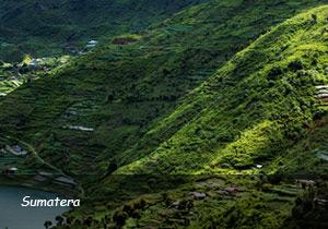 Land-Tour-3-Sumatera